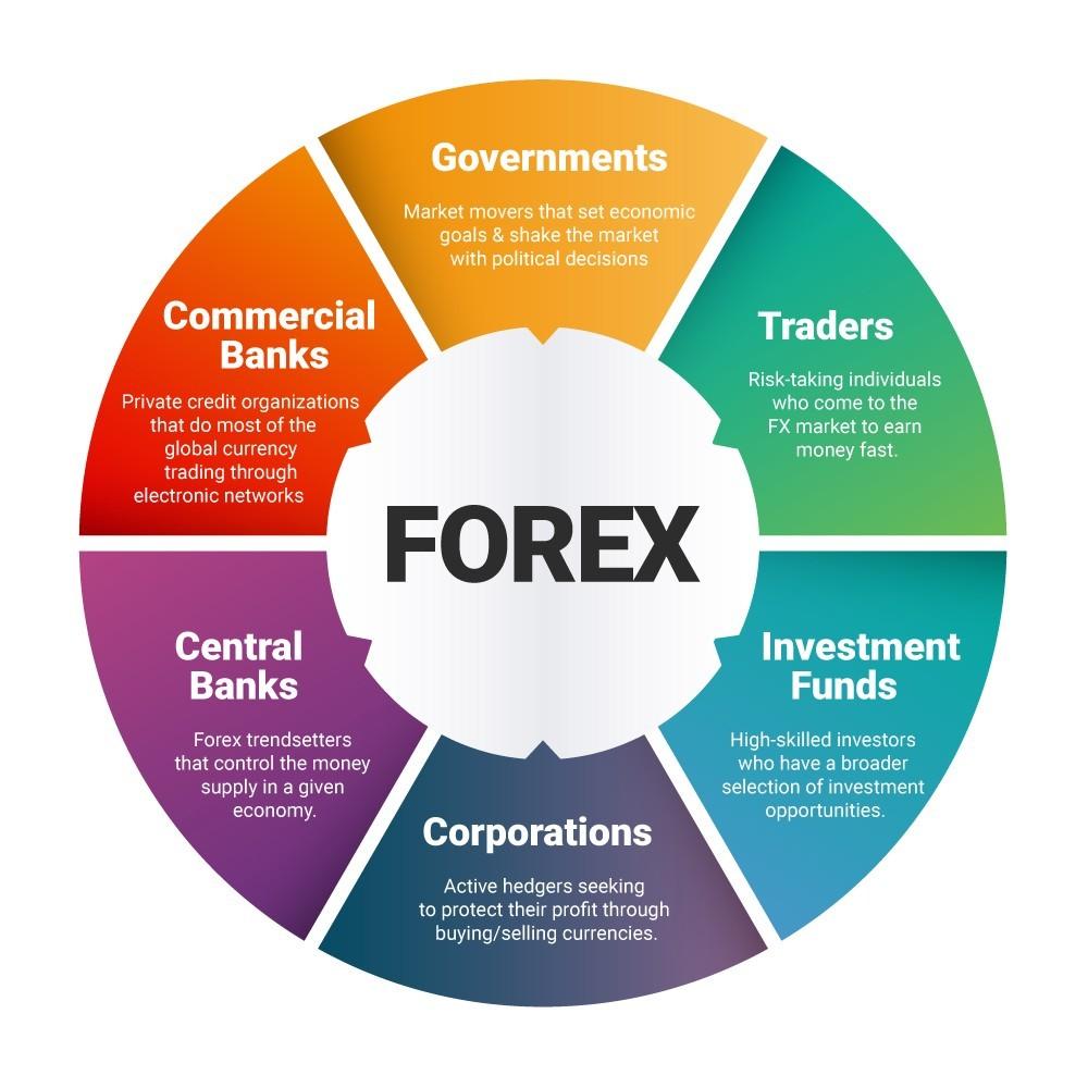 forex soggetti coinvolti, Hedge funds, traders